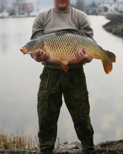 Ryba złowiona wgospodarstwie rybackim Ruda Różaniecka Dębowy Dwór naRoztoczu